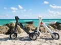 Innovative Electric Scooter Rental and Sales Business For Sale