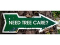 The Best Tree Cutting and Tree Services Company For Sale