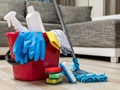 Professional Cleaning Services Business