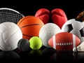 Sporting Goods Store for Sale in Essex County-29751