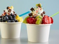 Popular Self Serve Frozen Yogurt Franchise With Good Income In Desirable Shopping Center RRC#: 3653