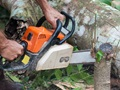 Arborist and Tree Removal Services Business For Sale