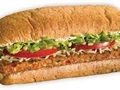 Industrial Park Sandwich Franchise Business in New York-30321