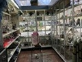 Pharmacy For Sale in NY