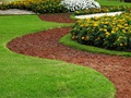 Wake County Commercial Landscaping & Maintenance - SBA Pre-Qualified