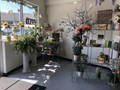 Established Flowershop in Westchester County, NY