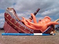 Inflatable Rental Business- Harnett County, NC