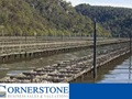 Merimbula /Pambula Oyster Farm for sale CSBB1903