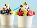 Santa Monica-Self Serve Yogurt Franchise-Long History-absentee Owner Run Store-Strong FranchiseSanta