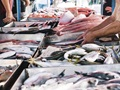 Profitable Fish & Seafood Market w/Real Estate.: $274k SDE