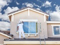 Commercial/Residential Painting Company w/ Real Estate