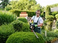 Residential Landscaping in West Valley