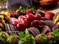 South Pinellas County Edible Arrangements Franchise for sale