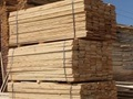 Lumber Company for sale in Perry County
