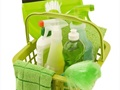 Green Cleaning Maid Service With Growing Sales - Business For Sale