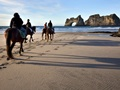 Horse Trekking Business For Sale - Family Lifestyle Opportunity
