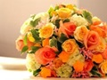 24 Years Established Florist For Sale
