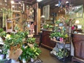 40 Year Established Flower Business For Sale