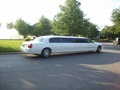Premier Limousine / Transportation Business For Sale