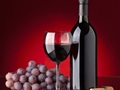 Winemaking Store Business Opportunity