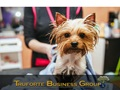 Established Pet Grooming Shop For Sale