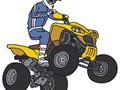Powersports Dealer For Sale